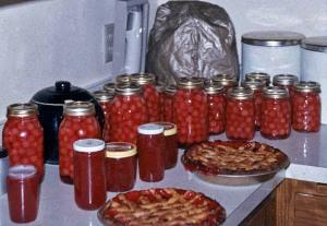 Harvesttime: my mom's canned cherries, jams, pies