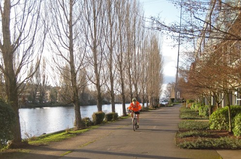 Image result for burke gilman trail seattle